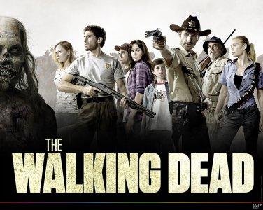WALKING DEAD T-SHIRT MED