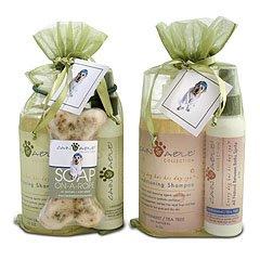 Cain & Able Shampoo & Spritz Gift Set (PEPPERMINT & TEA TREE)