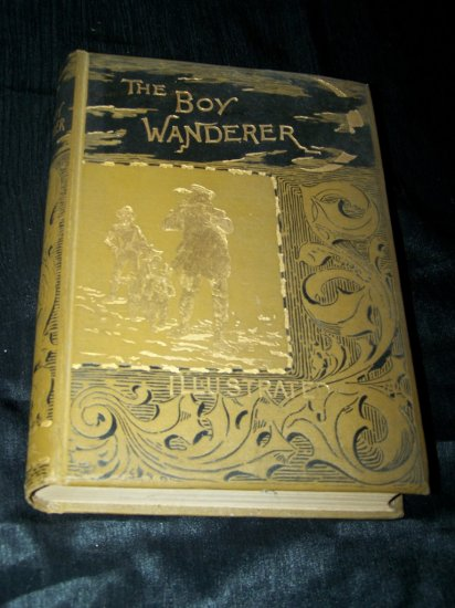 Antique 1887 BOY WANDERER Hector Malot Children's Book