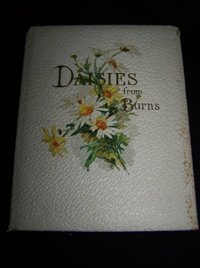 Antique DAISIES FROM ROBERT BURNS~Chromo-Litho Lithograph Book