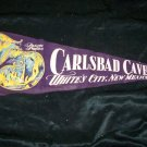 Vintage 1950s CARLSBAD CAVERN NEW MEXICO Souvenir Pennant