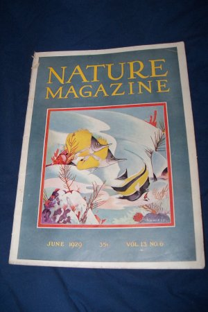 Vintage NATURE Magazine June 1929 vol 13 #6 Fish Cover