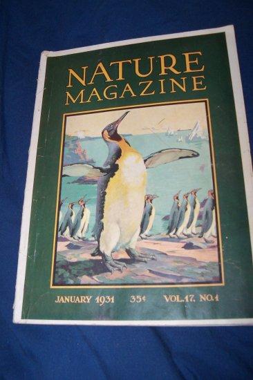 Vintage NATURE Magazine January 1931 vol 17 #1 Emperor Penguin Cover
