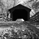 Sugar Creek Covered Bridge B/W