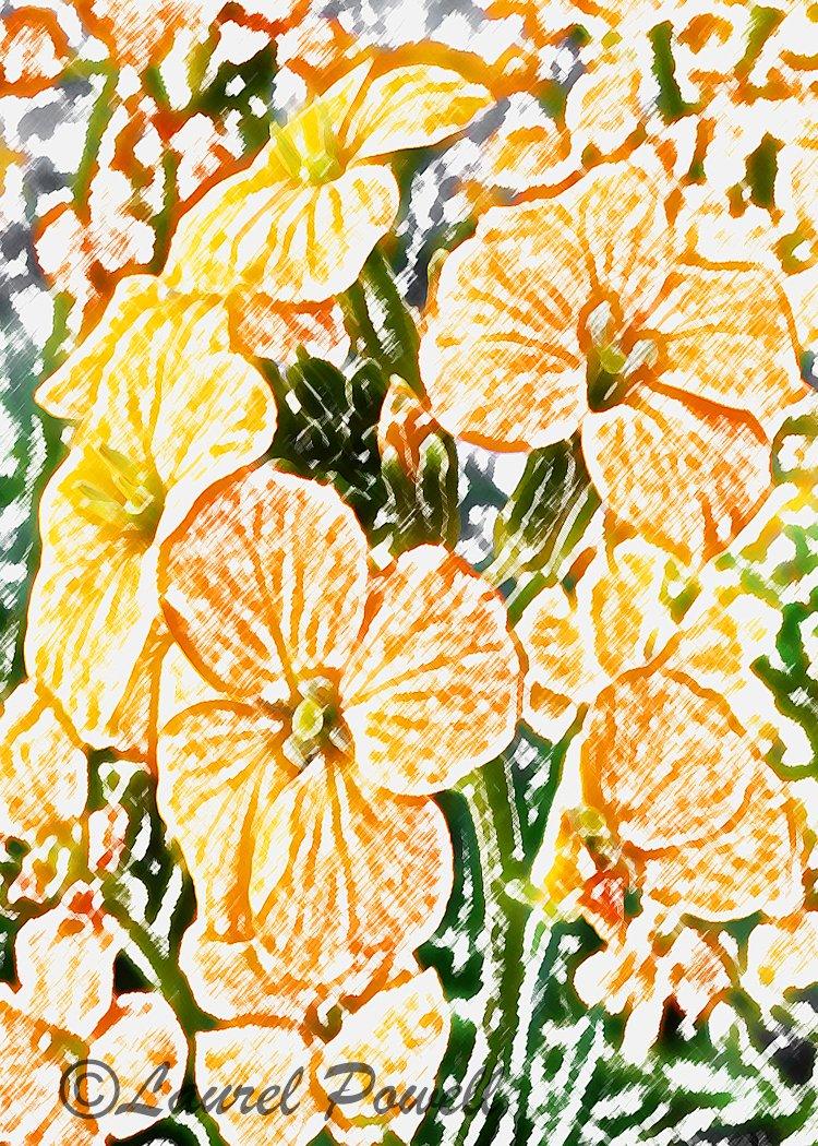 Orange Flowers ACEO