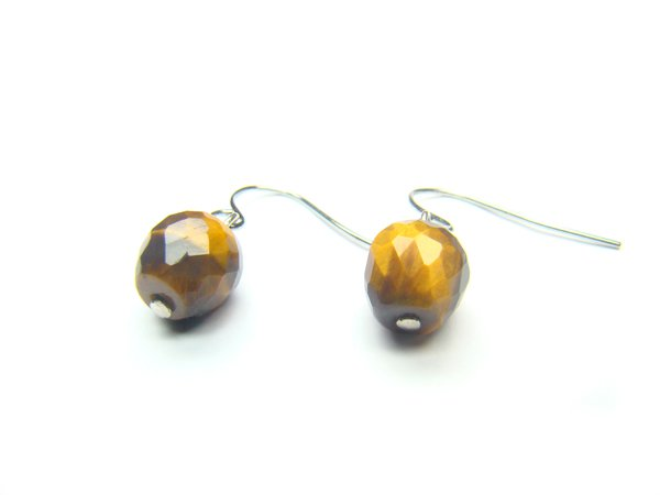 ETEXRE0710C Tiger Eye  Apple Shape  10mm Cut Earrings