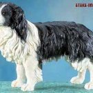 BORDER COLLIE DOG FIGURINE (5669s)