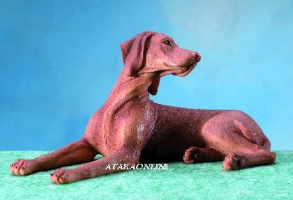 HUNGARIAN VIZSLA DOG FIGURINE (5672)
