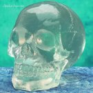 TRANSLUCENT-CLEAR HUMAN SKULL STATUE-SKELETONS-SMALL  (5451s)