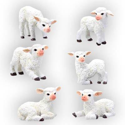 SET OF 6-SHEEPS-FIGURINES-DISPLAY-FUN s(5561)