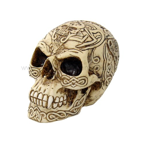 CELTIC HUMAN SKULL STATUE-FIGURINE-SKELETONS-HALLOWEEN (6405)