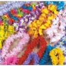 Hawaiian Lei Variety Pack - Tropical Hula Girl Party Leis (50 pack)