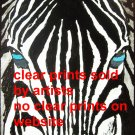 zebra close up art print