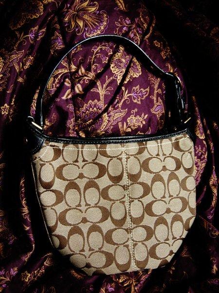Authentic Coach Handbag - Like New