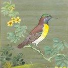 Purple Rumped Sunbird Ornithology Art Handmade Bird Home Decor Wall Painting