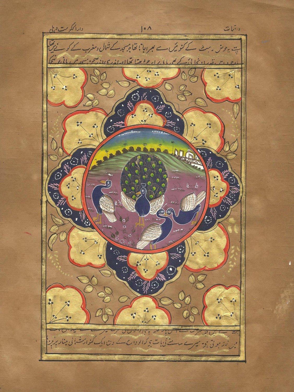 Indo Persian Peacock Bird Miniature Painting Illuminated Manuscript Islamic Art