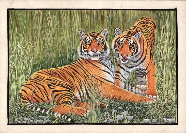 Bengal Tigers Painting Handmade Indian Miniature Wildlife Animal Watercolor Art