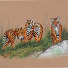 Bengal Tigers Handmade Painting Indian Miniature Wildlife Animal Watercolor Art