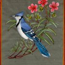 Blue Jay Bird Painting Rare Hand Painted Indian Miniature Wild Life Nature Art