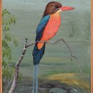 Brown Headed Russet Paradise Kingfisher Miniature Art Handmade Bird Painting