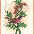 Bird Painting Handmade Watercolor Indian Miniature Ethnic Folk Decor Silk Art