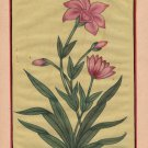 Indian Mughal Flower Miniature Painting Moghul Floral Handmade Watercolor Art