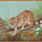Geoffroy Cat Painting Handmade Indian Miniature Wild Animal Nature Jungle Art