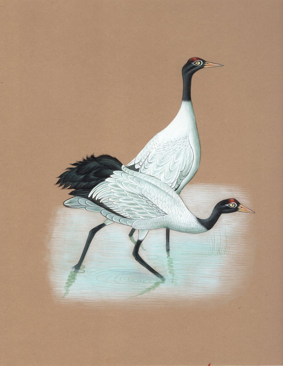 Indian Crane Miniature Painting Rare Handmade Watercolor