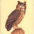 Eurasian Eagle Owl Art Handmade Bird of Prey Rare Watercolor Miniature Painting