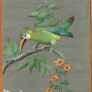 Emerald Toucanet Bird Painting Handmade Indian Wild Life Miniature Nature Art