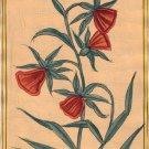 Mughal Flower Miniature Painting Handmade Indian Moghul Decor Tulip Floral Art