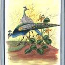 Indian Peacock Peafowl Art Handmade Blue Green Feather Watercolor Silk Bird Art