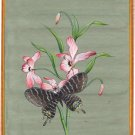 Butterfly Art Handmade Indian Miniature Nature Home Wall Decor Flower Painting