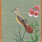Indian Miniature Nature Painting Great Crested Flycatcher Handmade Bird Art