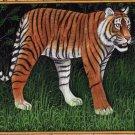 India Tiger Art Handmade Watercolor Miniature Wild Cat Animal Paper Painting