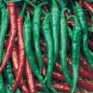 Long Thin Cayenne Pepper Seeds