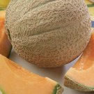 Hearts of Gold Melon / Cantaloupe Seeds