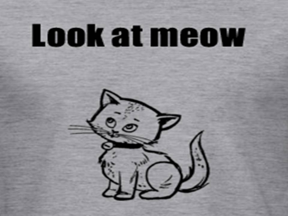 Look at meow