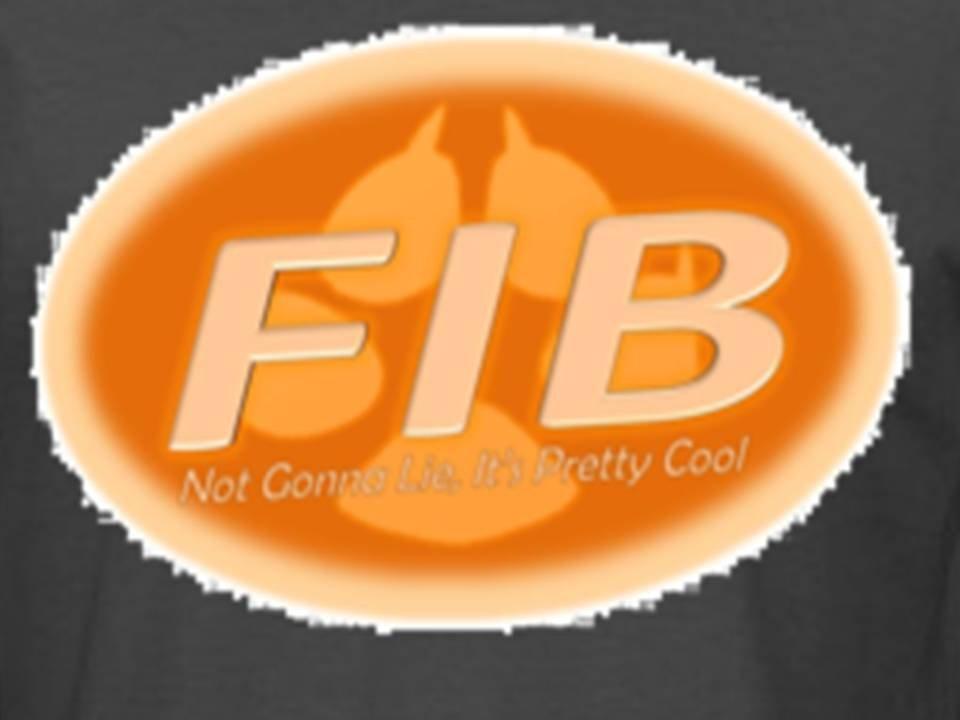 FIB shirt