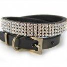 Diamond studded dog collar