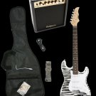 Zebra Electric Guitar + 15w Amp + Gig Bag + Cord + Whammy Bar + Strap + Picks