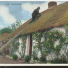 The Thatcher - Irish Country Life Series Postcard