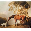 "Handicrafts Repro oil painting:""Horse And White Dog"""