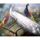"Handicrafts Art Repro oil painting:""pretty Peacock"""