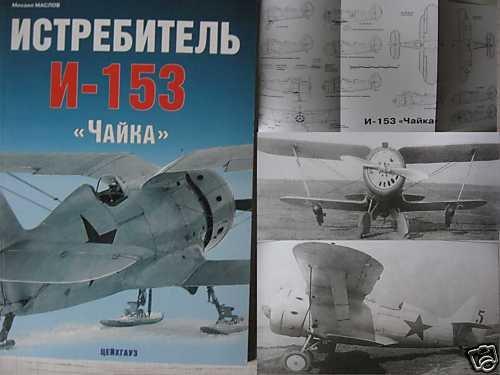 Russian WW2 Biplane Fighter Aircraft I-153 CHAIKA