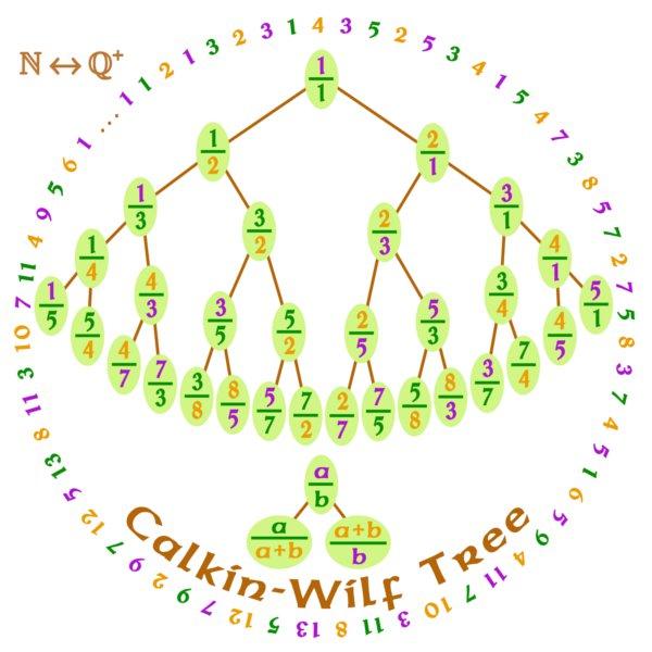 Math T-Shirt - Size XL - Unisex White - Calkin-Wilf Tree