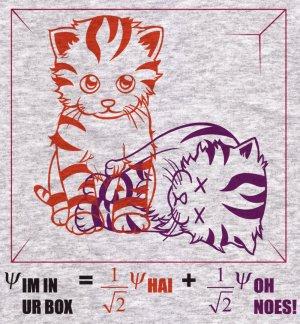 Physics Hoodie - Size XL - Ash - Schrodinger's LOLcat Sweatshirt (Hot Version)