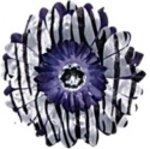 Purple Zebra  daisy hairclip