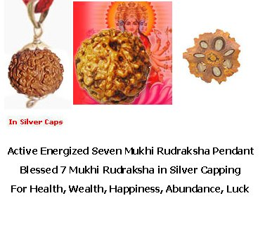 Active 7 Mukhi Rudraksha Silver Pendant For Health,Wealth & Happiness.