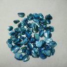 Blue Shell Beads